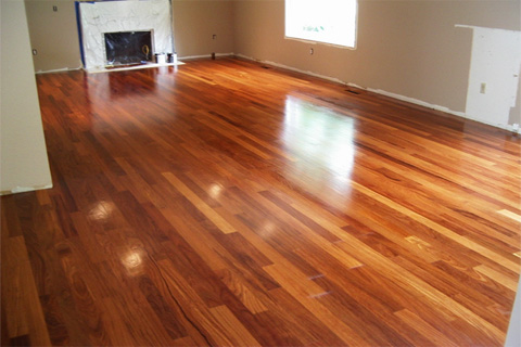 Wood species moris hardwood floors for Red cumaru flooring